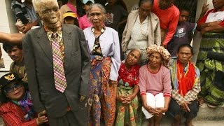 Tana Toraja Indonesia  city images : The Walking Dead In Reality: The Rituals of Toraja