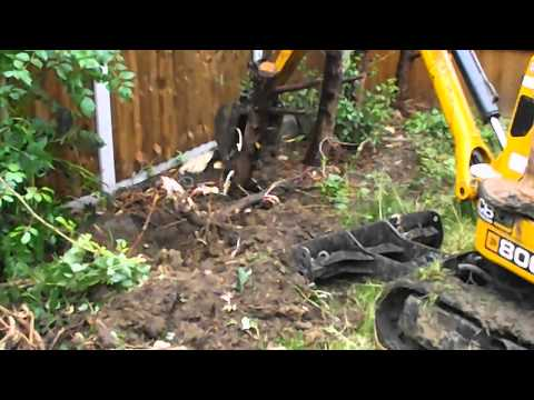 Video JCB Micro 8008 tree stump removal DMS Micro Digger Hire With Operator download in MP3, 3GP, MP4, WEBM, AVI, FLV January 2017