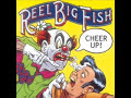 Everything is Cool - REEL BIG FISH