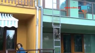 VIDEO DNE: Kocour si jde pro sváču. Po žebříku!