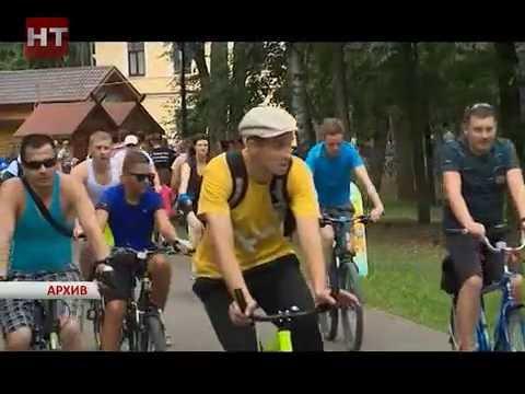 Новгород вместе со всей страной в субботу отметит День физкультурника