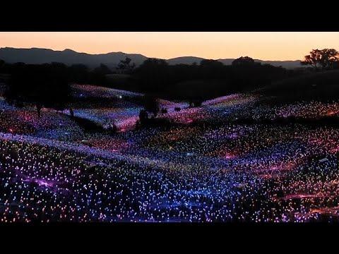 Καλλιφόρνια: Τα φώτα ζωντανεύουν την πλαγιά