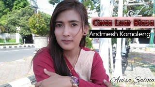 Cinta Luar Biasa - Andmesh Kamaleng (Cover Anisa Salma) Skadruk