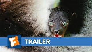 Nonton Island Of Lemurs  Madagascar   Trailers   Fandangomovies Film Subtitle Indonesia Streaming Movie Download