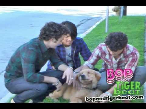 Los Jonas Brothers jugando con Elvis