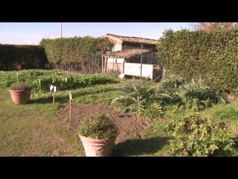 Abruzzo, Pepe: 'Ridurre burocrazia ad imprese agricole' (VIDEO)