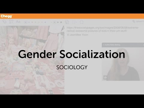 role sociology and social transformation This article explores new forms of organizing (and organization creation) in relation to entrepreneurship and social transformation in particular, in the dialogue that follows in this issue, we initiate a discussion regarding the ways through which social transformation is or can be related to community action and public and/or social.