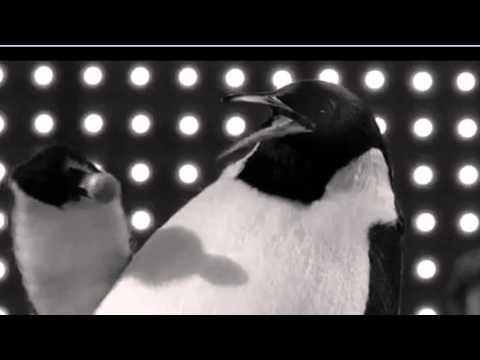 pino il pinguino - illimitatamente