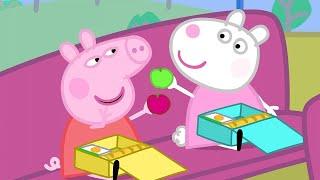 Video Peppa Pig Full Episodes | School Bus Trip  | Cartoons for Children MP3, 3GP, MP4, WEBM, AVI, FLV Juli 2019