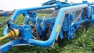 Standen | TSP1900 | Sweet Potato Harvester | USA