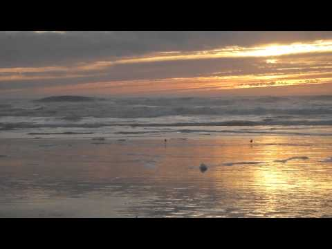 Tekst piosenki The Lettermen - You'll Never Walk Alone po polsku