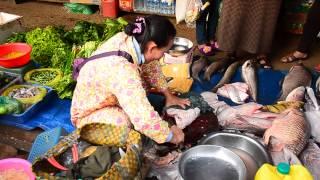Stung Treng Cambodia  city photos : Fish in Stung Treng market, Cambodia