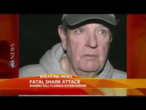 shark attacks in florida. Shark Attack Florida 2010.
