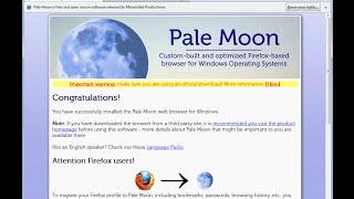Обзор Pale Moon