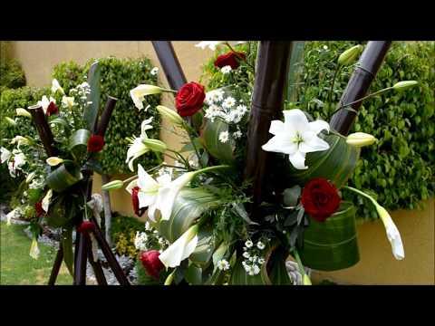 Jardines par fiestas df videos videos relacionados con for Jardines bodas df