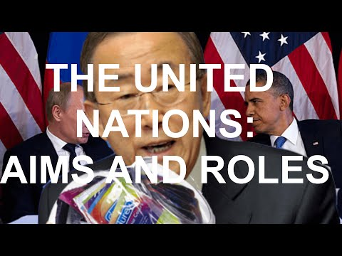 LESSON 7: THE UNITED NATIONS - AIMS (U3AOS1KK1-2)