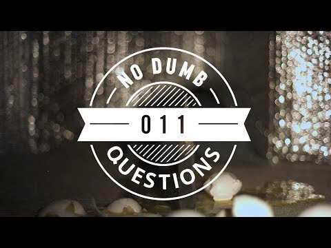 No Dumb Questions 011 - What Makes You Cry?