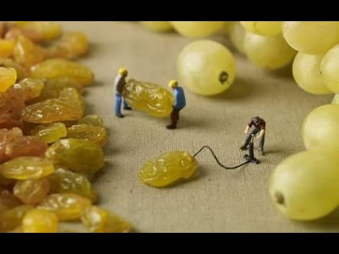 வித்தியாசமான, வியக்க வைக்கும் அழகான படைப்பு !!!  Amazing creativity ideas