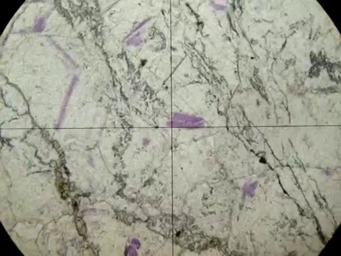 Fluorita 6   Em cristais grandes