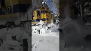 Tren Patagóncio con pasaje completo para próximas salidas.