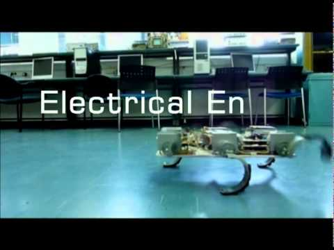 Technion Robots -- Snake, Worm, Wall Crawling, Algorithms, Multi Agent