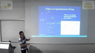 ELSC-ICNC Seminar - Maoz Shamir