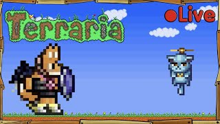 Terraria - Flying Cat - • Live