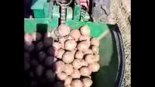 Картофелесажалка для мотоблока Мотор Сич видео