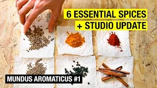 #1 The Only 6 Spices You Will Ever Need ! MUNDUS AROMATICUS by Alex French Guy Cooking