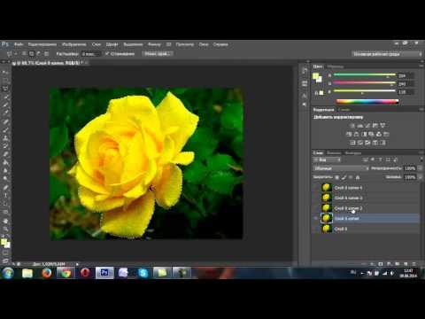 Анимация в программе фотошоп при помощи фильтра шум