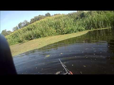 калининградская рыбалка на реке лава