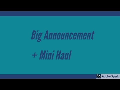 Big Announcement + Mini Haul
