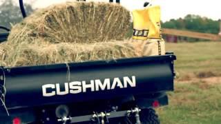 7. Cushman Hauler 4X4 Diesel