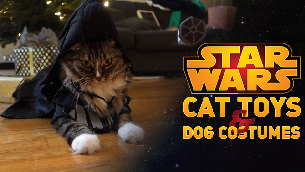Star Wars Pet Toys & Costumes!