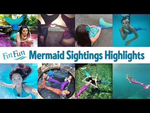 Mermaid Sightings Highlights