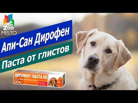 Паста от глистов для собак и щенков - Дирофен