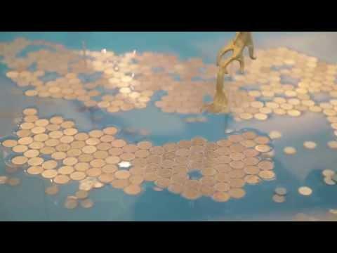 他把3000枚一元硬幣全數排在水面上,等到最後成品完成所有人都說不出話來了!