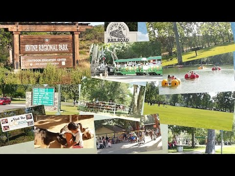 Walkthrough of Irvine Regional Park and Orange County Zoo Pedal Boat Railroad Horseback Riding