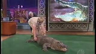 Video Jay Leno almost bitten by Alligator - Steve Irwin 2002 MP3, 3GP, MP4, WEBM, AVI, FLV Juli 2019