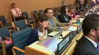 UNEA 4: Intervention by Isis Alvarez (Global Forest Coalition)