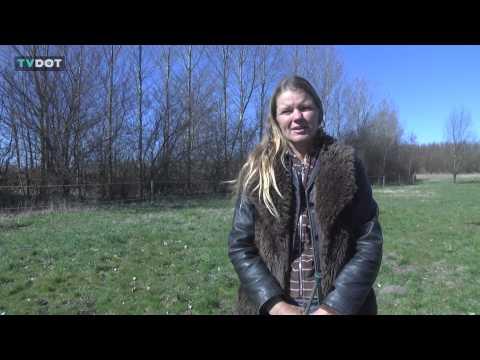 Naturlig Kommunikation – et portræt om Lotte Helming.