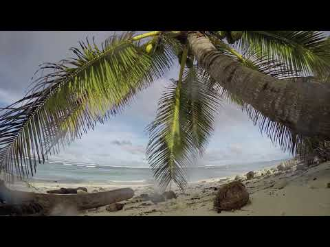 Video - Ένα εκατ. παπούτσια και 370.000 οδοντόβουρτσες βρέθηκαν σε απομονωμένο νησί