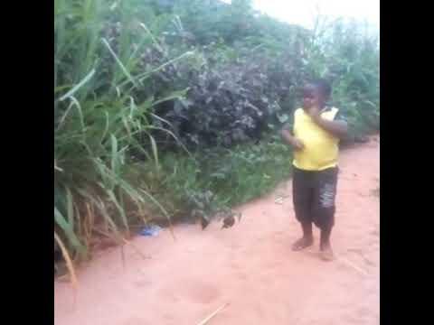 Seno and son ozo na Igbo 1