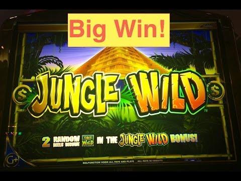 Jungle Wild Slot Machine Bonus Big Win!