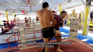 Lion Muay Thai Gym In Rawai Phuket Thailand