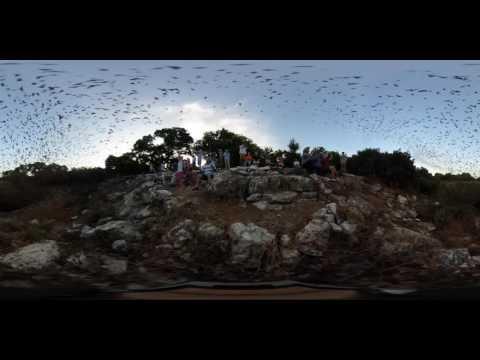 Experience Bracken Cave 360