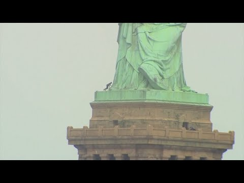 New York: Freiheitsstatue nach Protestaktion geräumt