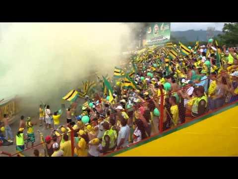 La fiesta del leopardo. Atletico Bucaramanga vs popayan. - Fortaleza Leoparda Sur - Atlético Bucaramanga