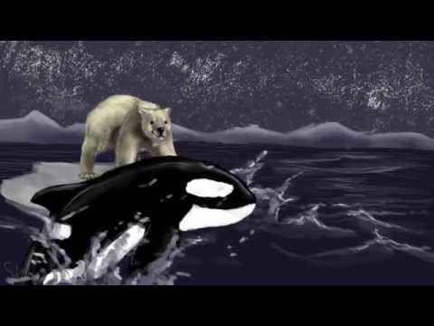 orca map part 3