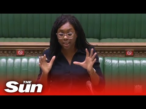 BLM & 'white privilege' banned from schools as minister blasts Labour
